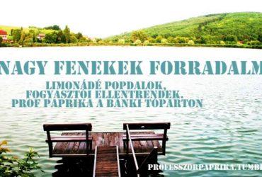 Nagy Fenekek Forradalma: a professzorasszony teskép-mozgalmakról beszél a bánki tó partján fürdőzők között