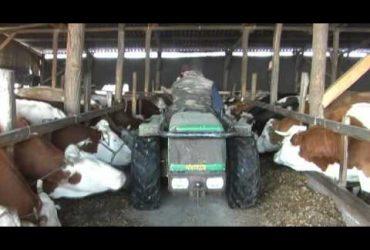 Ahol tejet kapni 1-2. A TVE és a Zöld Pók filmje